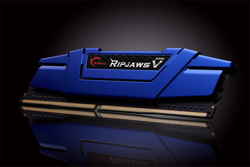 Ripjaws V blue