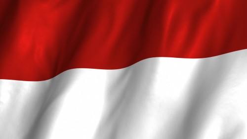 ID_FLAG