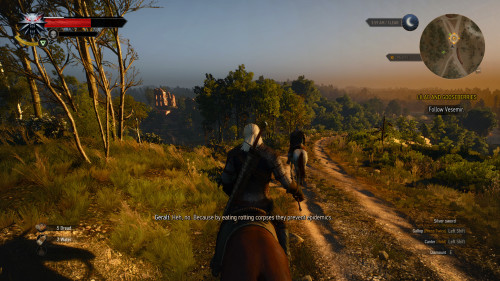 witcher3_SS