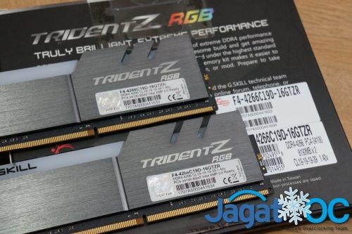 TZ RGB 4266C19s